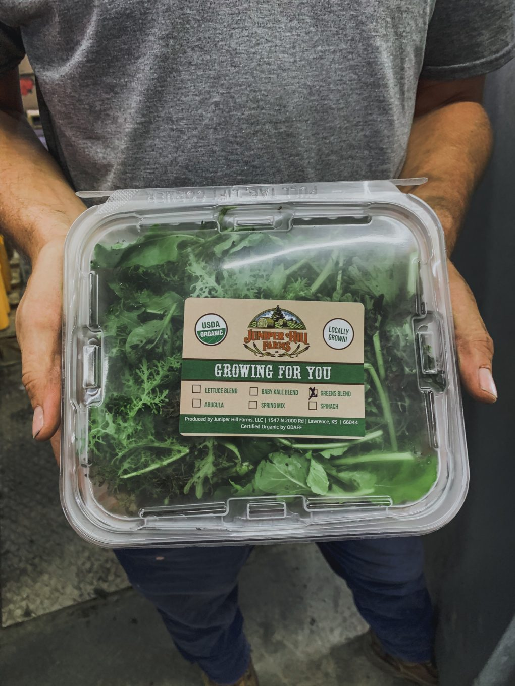 packaged spinach ready to ship to the grocery store