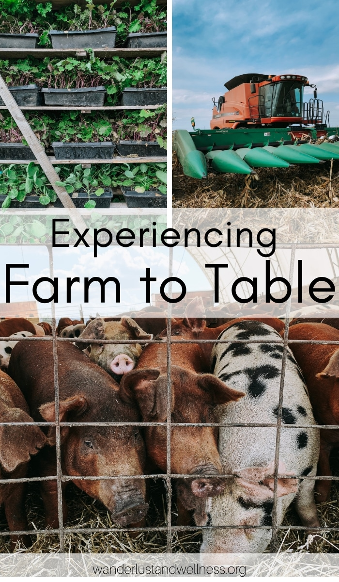 a collage of farming images